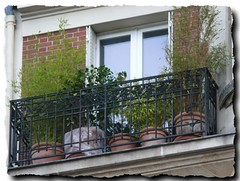 Fin d'année 2009 Paris (normandie2005_horst Moi_et_le_monde) Tags: paris city france ville streetart париж parīžios парыж pariz paříž парис paräis փարիզ parigi paryż パリ 巴黎 باريس pariisi პარიზი פריז פּאַריז पेरिस páras 파리 parīze paryžiuje париз parijs پاریس