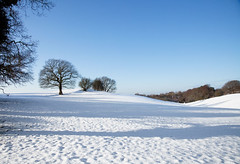Snowscape2_0621 (PeterChad) Tags: uk blue white snow tree canon countryside hill getty mk2 5d slope snowscape alderleyedge cheshre