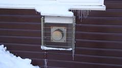 DSC04184 (edwardsgt) Tags: snow january tring 2010