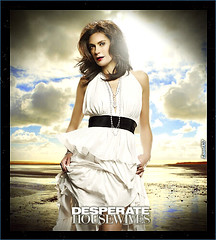 73. Desperate Housewives  Susan Season 6 (Isael107) Tags: 6 season dvd susan boom desperate housewives abc mayer especial delfino cruch 6x10 isael107