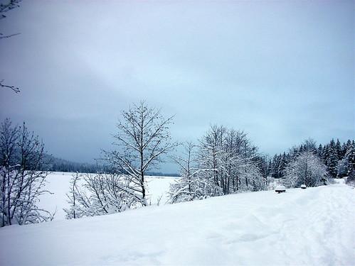 its snowed!!!
