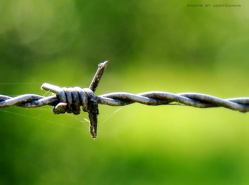 O outro lado é o medo da liberdade, Jonatas Cunha, CC