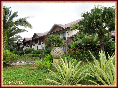 Felda Residence Hot Springs (Sungai Klah Hot Springs Park) - landscape at the residential hotel area
