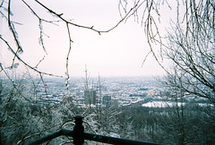 Mt Royal - Montreal