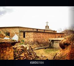 KURDISTAN (Kurdistan Photo ) Tags: love photography loves kurdistan barzani kurd kurden photo kuristani kurdistan4all kurdistan4ever kurdphotography  kurdistan4all kurdene kurdistan2008 flickraward kurdistan2009