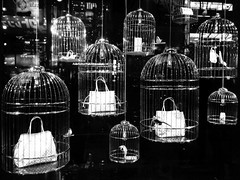 173/365: Cages (joyjwaller) Tags: blackandwhite art birdcage window japan shop advertising tokyo shinjuku display cage purse elite trap brands project365 creativemerchandising ireallydontgetitipreferhippiestuffcraftedbygentlelocalartisans