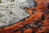 Runoff Channel Edge (wyojones) Tags: park hot basin upper national springs yellowstonenationalpark boardwalk yellowstone wyoming np geyser thermal thepark hotsprings wy microbes thermals geysers runoff hydrothermal cyanobacteria thermophiles uppergeyserbasin daisygeyser runoffchannel monera yellowstonewyoming kingdommonera thermalcreek wyojones biofilms runnoffchannel