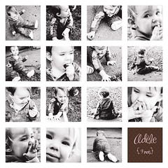 Adle (Dana Champoux) Tags: pink baby girl rose collage kids portraits photography image photos expressions nb montage enfant fille bb