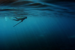 Freediver (Spearfish) Tags: photography underwater ivan freediving apnea wishbone spearfishing   bakardjiev  wwwdomeportcom