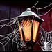 Lantern by lintonolive