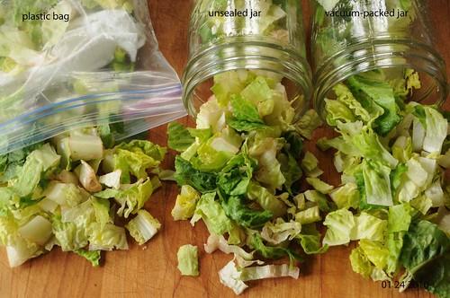 01 24 10 lettuce