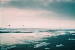 Playa Brava en 35mm =)