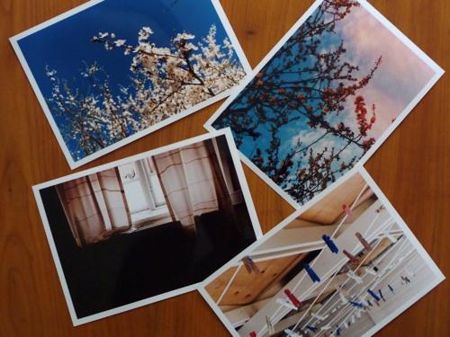 lea's prints