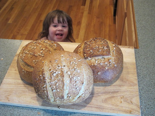 The Bread Geek's Helper...
