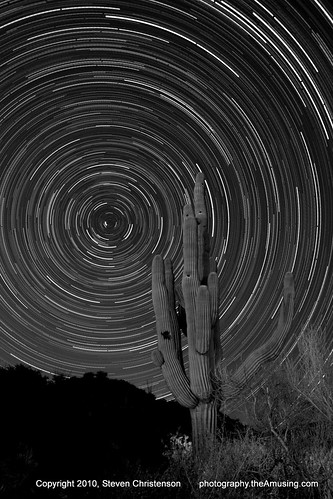 The Saguaro Story [5_029980-30021]