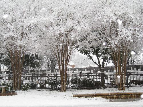 Snow Covered Garden of Angels