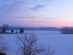Tramonto (lentoviaggiare1) Tags: italy alberi italia tramonto blu rosa natura neve albero bianco canegrate