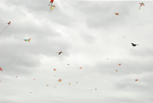 swarm of kites