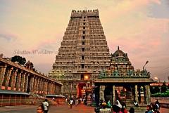 """Agara Mudala Ezhuthellam, Adhi Bhagavan mudatre ulagu - Thirukurral (Ashok""""s) Tags: temple photography nikon handheld 1855mm chennai tamilnadu picnik ashok tiruvannamalai d60 girivalam annamalaiyar unseenindia"""
