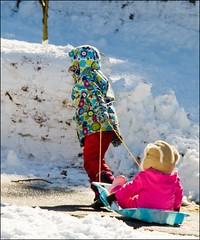 Kids and Winter / I Got Ya (1/8) (Tony Fischer Photography) Tags: winter friends snow kids children fun newjersey nj sled