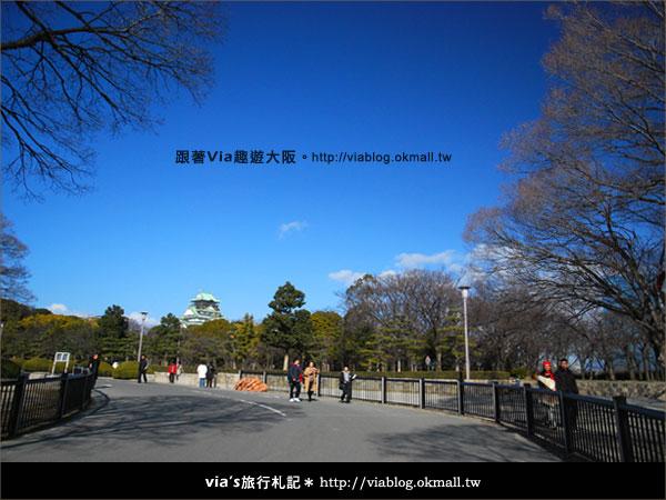 【via關西冬遊記】大阪城天守閣!冬季限定:梅園梅花盛開19