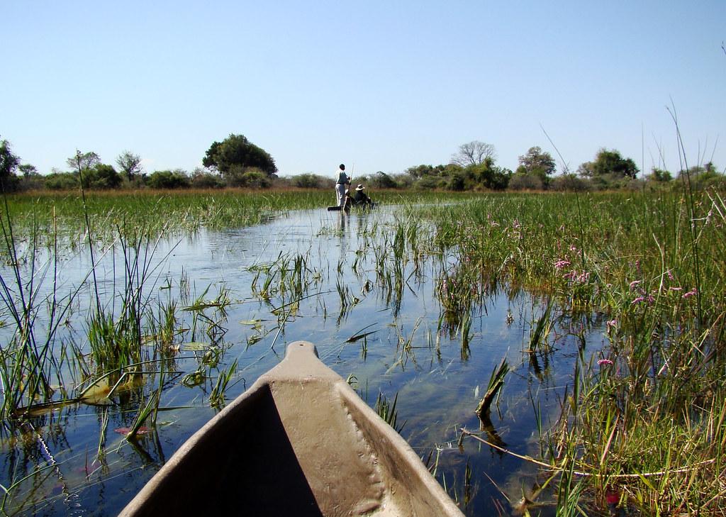 DSC08833 Canoe Ride