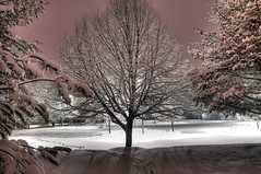Winter Night (LSJPHOTOGRAPHY) Tags: winter snow cold night captured scene moment