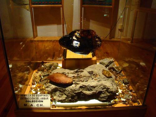 El museo del ámbar (7)