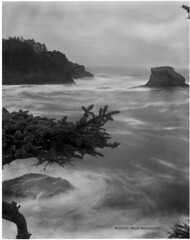 "Storm Tide - Cape Flattery • <a style=""font-size:0.8em;"" href=""http://www.flickr.com/photos/29020047@N05/4399395732/"" target=""_blank"">View on Flickr</a>"