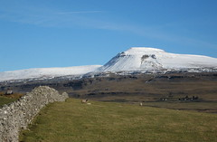 Ingleborough, view from Kingsdale - Explore 5th March - 16th March (Lune Rambler) Tags: snow nature beauty landscape sheep threepeaks stonewalls tabletop yorkshiredales ingleborough northernengland kingsdale thegalaxy bej anawesomeshot ubej lunerambler mygearandmepremium mygearandmebronze mygearandmesilver mygearandmegold mygearandmeplatinum mygearandmediamond