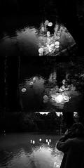 balloons@buttes chaumont (Hannah Frances) Tags: park trees bw sun sunlight white lake black beautiful birds contrast balloons magic dream ethereal dreamy i500 hannahboulton