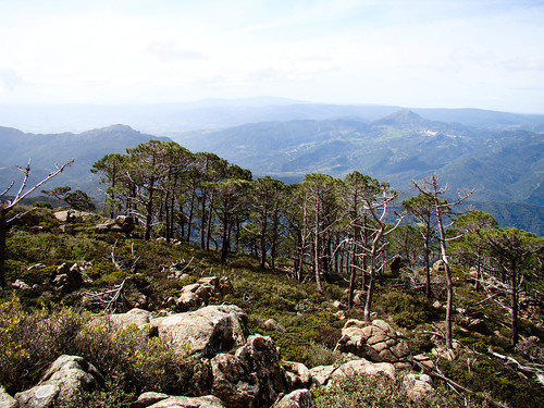 Ruta Sierra Bermeja (13)