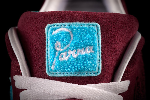 parra_am1_tongue_detail