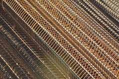 Reinforce Steel Bars (KC Toh) Tags: rust foundation piling rebar steelbar d90 锈 reinforce 钢铁 铁条 borepile