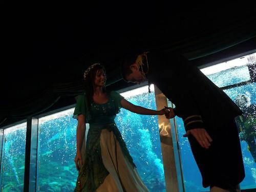 weeki wachee mermaid show.