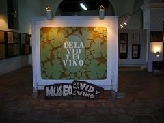 Cafayate: en diciembre montarán el museo de la vid y el vino