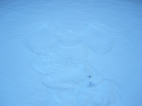 Snowy January spin (snow angel stop..)
