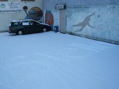 Stello on the snow..