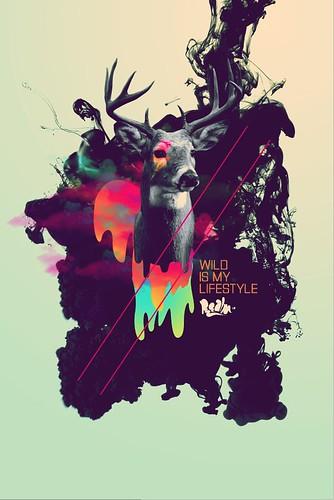 WIMLS v3