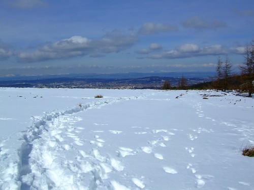 snowy Pentlands 012