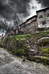 quiero salir en la foto (KidLoko) Tags: trees espaa house clouds cat town spain nikon pueblo gato nubes hdr extremadura caceres gargantalaolla d90 kidlokofoto