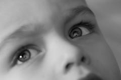 le regard (ken14600) Tags: portrait ny newyork paris france macro blancoynegro canon blackwhite nikon noiretblanc nb 100mm best portraiture 7d l luka 1755 100mmmacro flickraward eliteimages