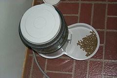 electronic cat feeder