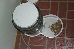 electronic cat feeder