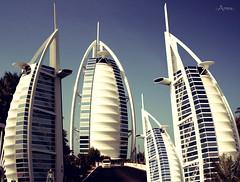 Burj Al Arab (Mohammad Reza Hassani) Tags: world building tower beach canon hotel dubai united emirates tall jumeirah burj  tallest arabs       theburjalarab towerofthearabs      arabsail ararab