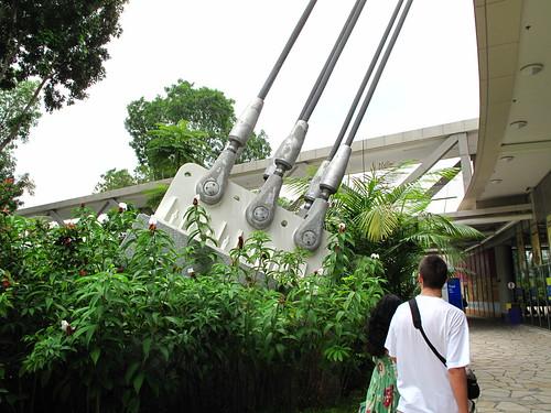 IMG_0289 新加坡摩天轮钢缆