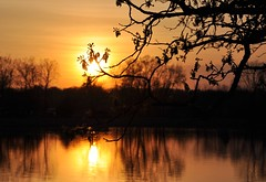 A Spring Sunset (Explored!) (Seth Oliver Photographic Art) Tags: reflections landscapes illinois nikon midwest sunsets foxriver pinoy silhouttes naturescapes springseason d90 mchenrycounty mchenrydam perfectsunsetssunrisesandskys setholiver1