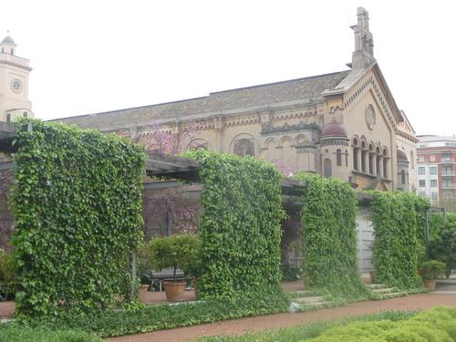 La jardin de las hesperides
