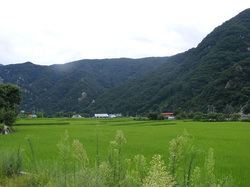2008_0817Korea20015