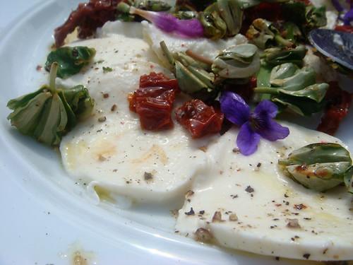 beech sprouts mozarella salad